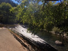 A cool little fish hatchery area along the Salmon Creek Trail.