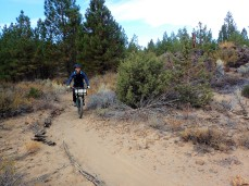 Heading down the Coyote Loop Trail.