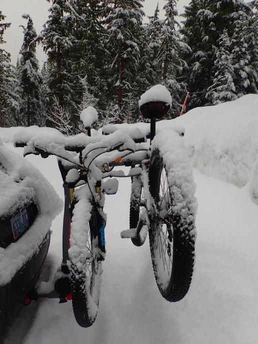 Wintrified bikes.