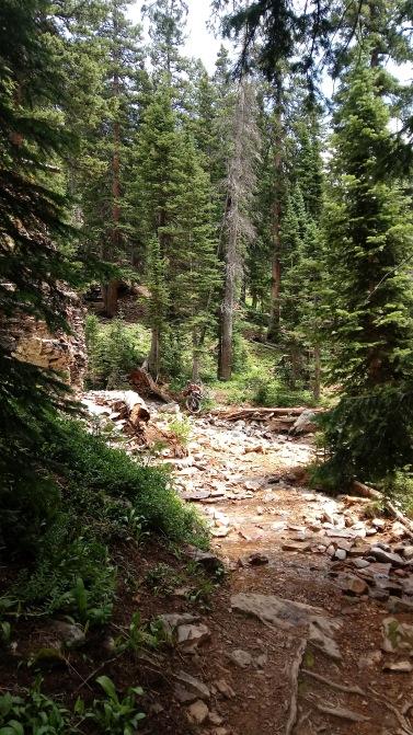 One of a few creek crossings.