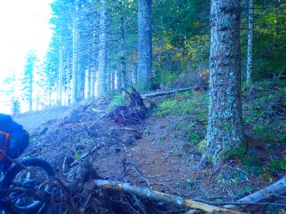Part of the destroyed trail.