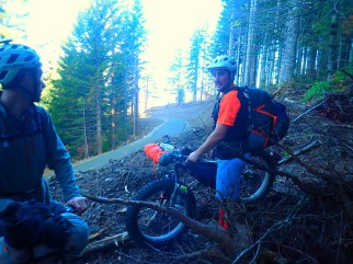 The logging road that cuts right through the Tarbell Trail.